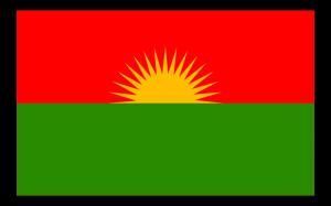 Fahne der PJAK, der iranischen Schwesterorganisation der PKK. Ebenfalls verboten in Deutschland.